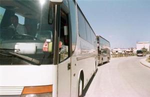 bus 1_425x